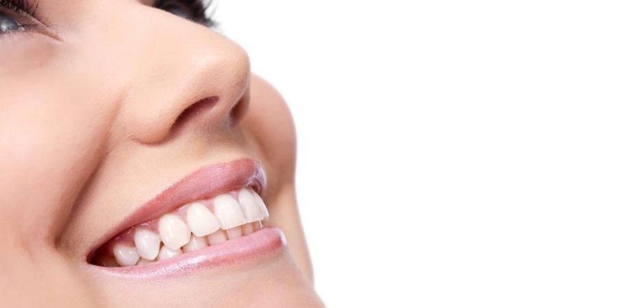 Dentist in St. Petersburg FL