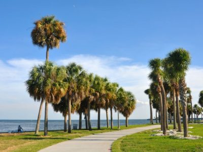 What to Do on Leap Day in St. Pete